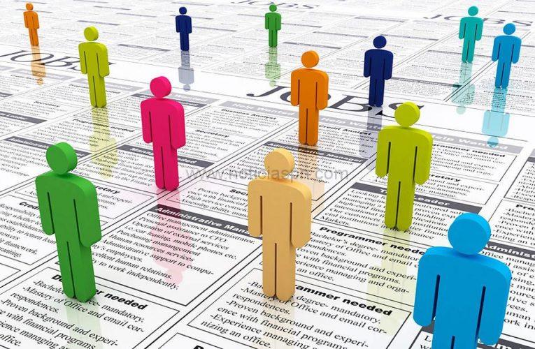 Demandas de empleo en la Comarca. 20 de agosto