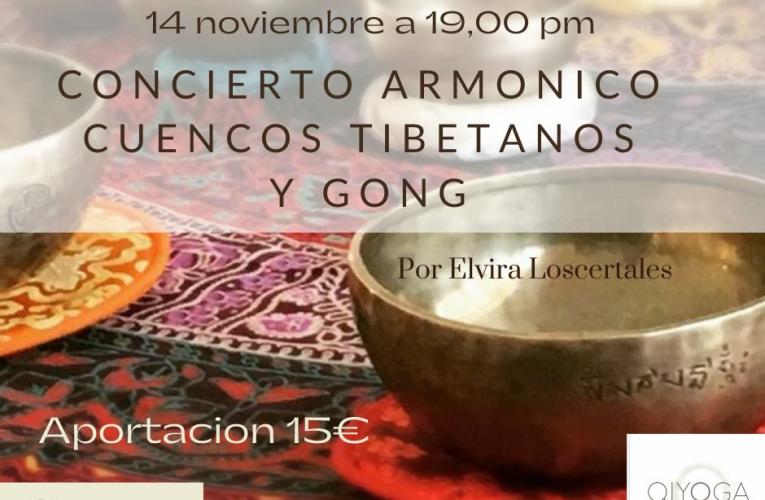 Propuestas de ocio en la comarca del 10 al 15 de noviembre